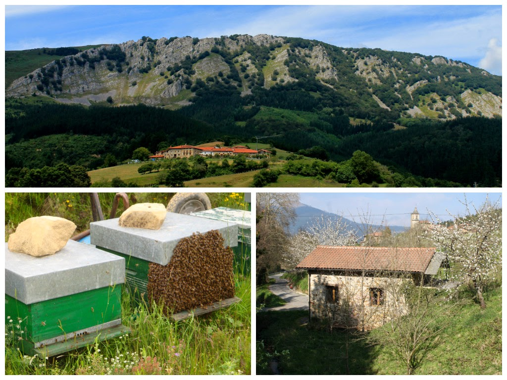 Anboto, abejas, entorno natural, aldeko eztia