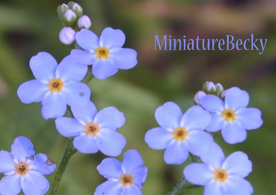 MiniatureBecky