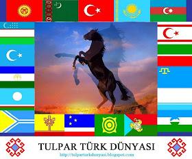 turk dunyasi
