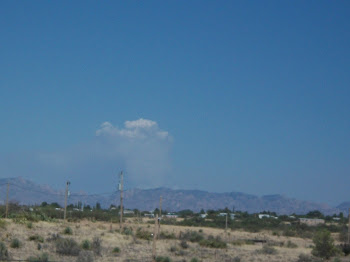 Plumes of smoke from the Horseshoe fire