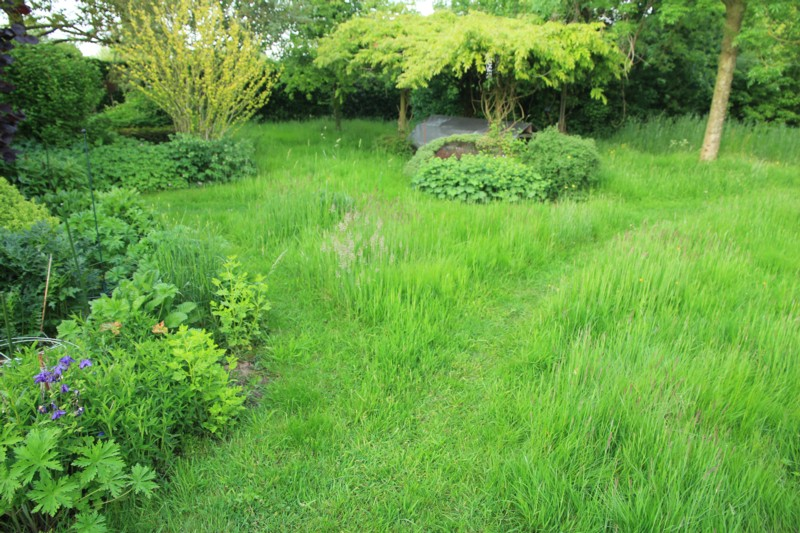 Gras In Tuin : Gazon aanleggen en onderhouden ecostyle tuin