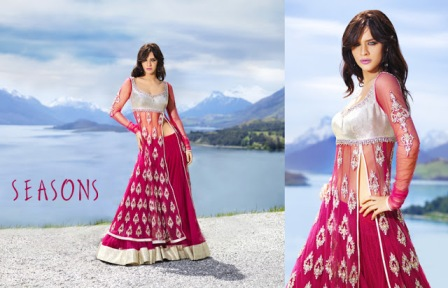 Embroidered-Fancy-Lehenga