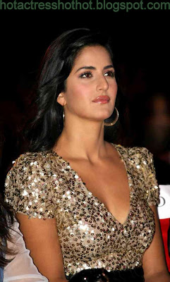 katrina kaif hot pics in silver top