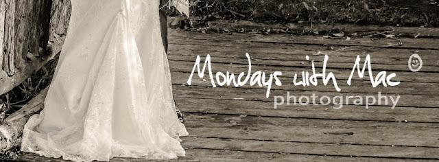 wedding stop motion invite