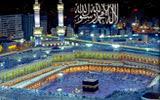 Makkah Live TV - Bee TV Online