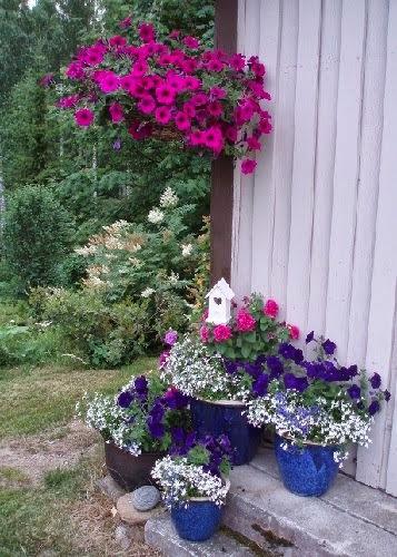 Ruukku-puutarhaa