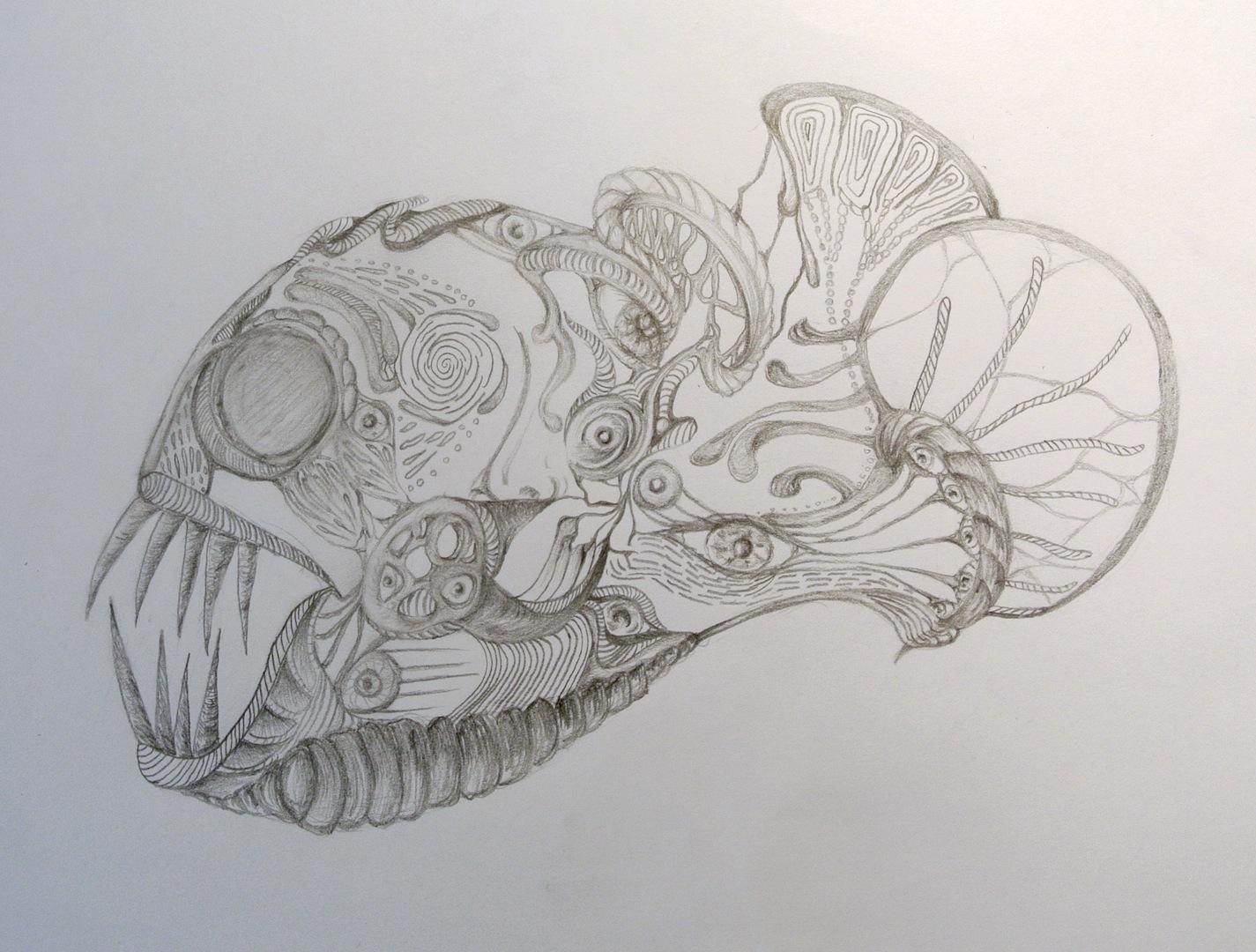 ocean fish drawings