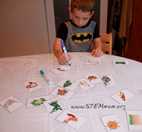 Boy using STEM Mom's Food Chain Activity Cards