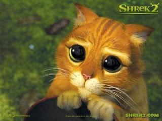 Mata Kucing Membesar didalam Gelap