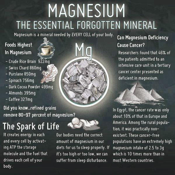 Magnesium function