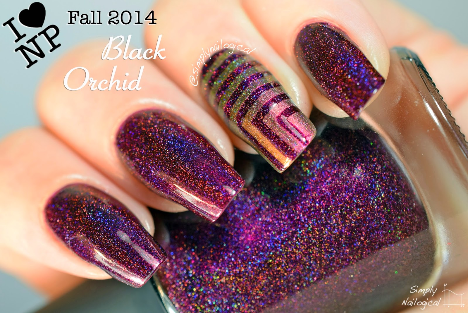Black Orchid - ILNP Fall 2014 collection swatch