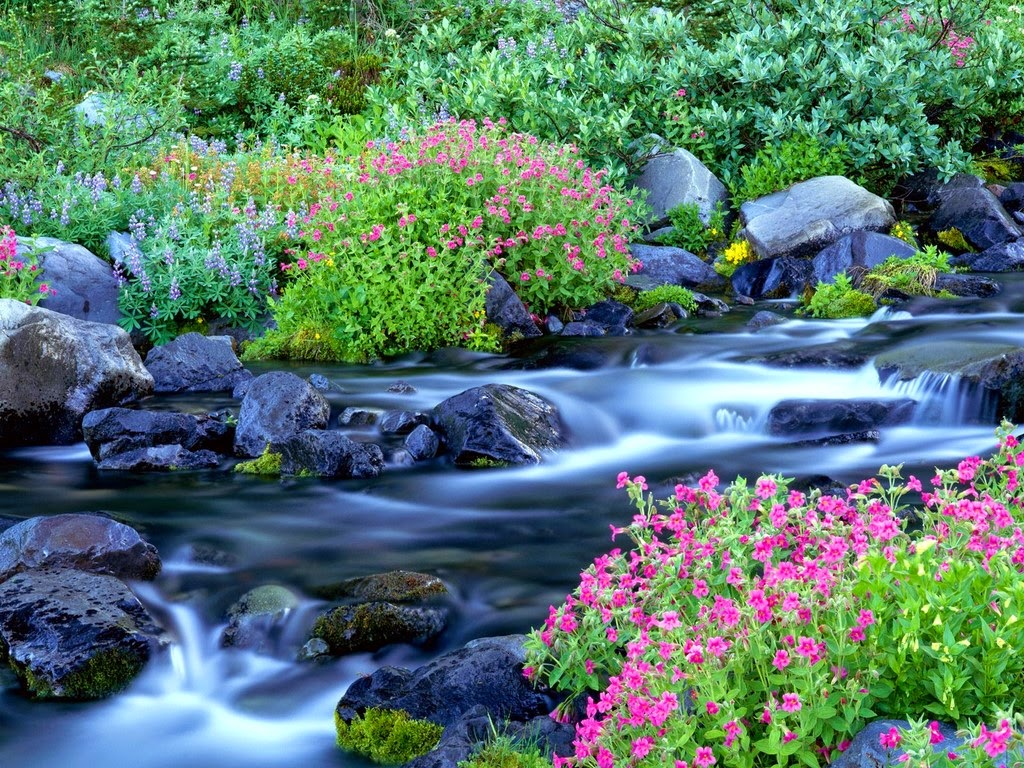 Nature Springs Water 2014 HD Wallpapers And Guide Golden Wallpaper