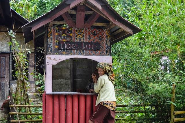 "Kambira: Pemakaman Bayi Toraja di ""Rahim"" Pohon Tarra'"