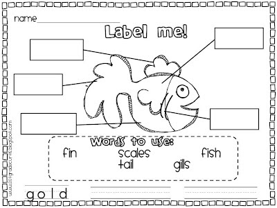 Free Brown Bear Activity Worksheet