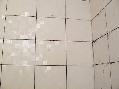 Faïences de salle de bain