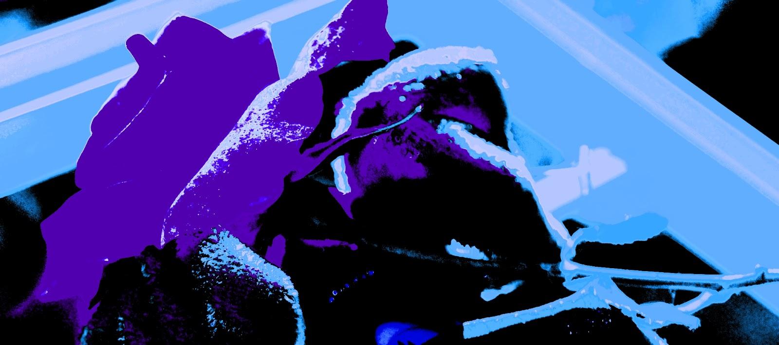 A. Orlando  La rosa blu per Daniela e14bbac7e1e