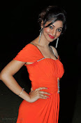 Shilpi Sharma Photos at Green Signal Audio-thumbnail-17