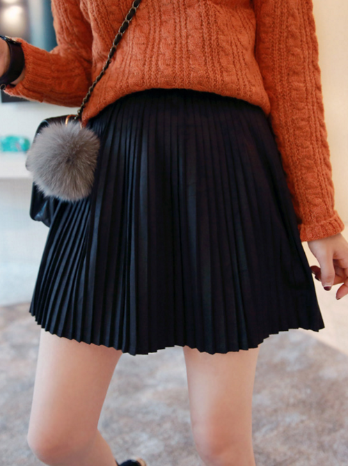 Flared Accordion Pleats Skirt