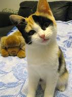 Sissi,nata il 30/6/2012