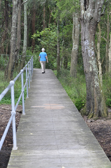 Carawah Reserve Boardwalk