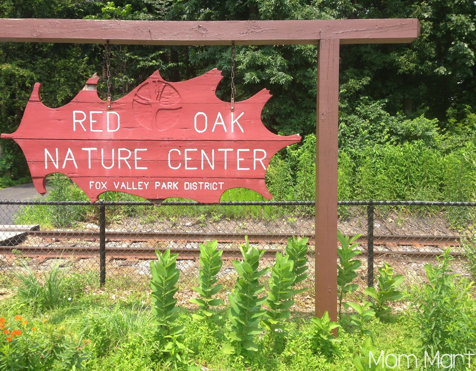 Fun and Free in Illinois: Red Oak Nature Center