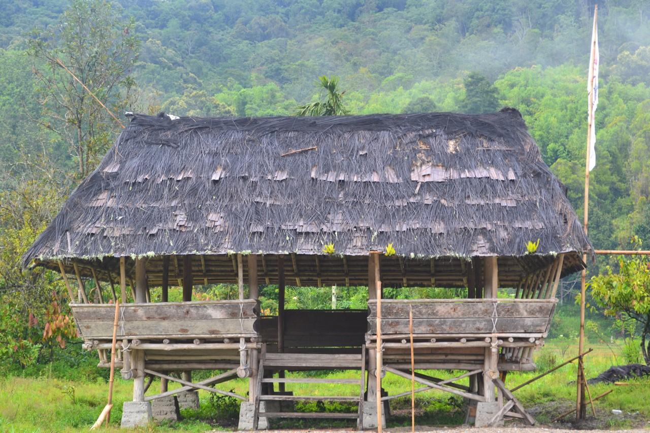 Rumah Tradisional Desa Toro
