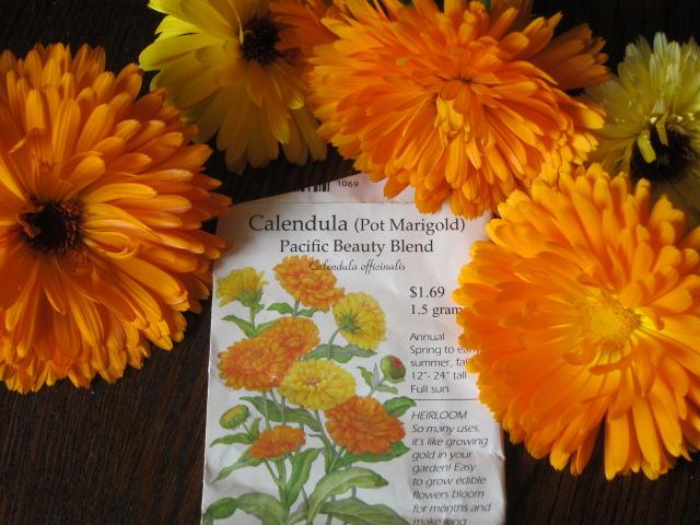 Cómo plantar plantas perennes | Costa Farms