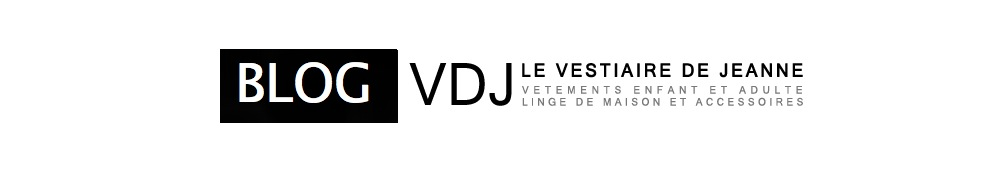 BLOG VDJ