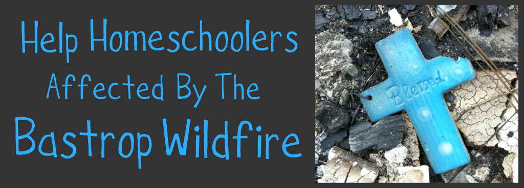 Help Bastrop Homeschoolers Affected by Wildfires