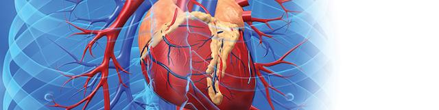 Cara Pengobatan Penyakit Jantung Rematik dan Diagnosis Gejala Rematik Jantung