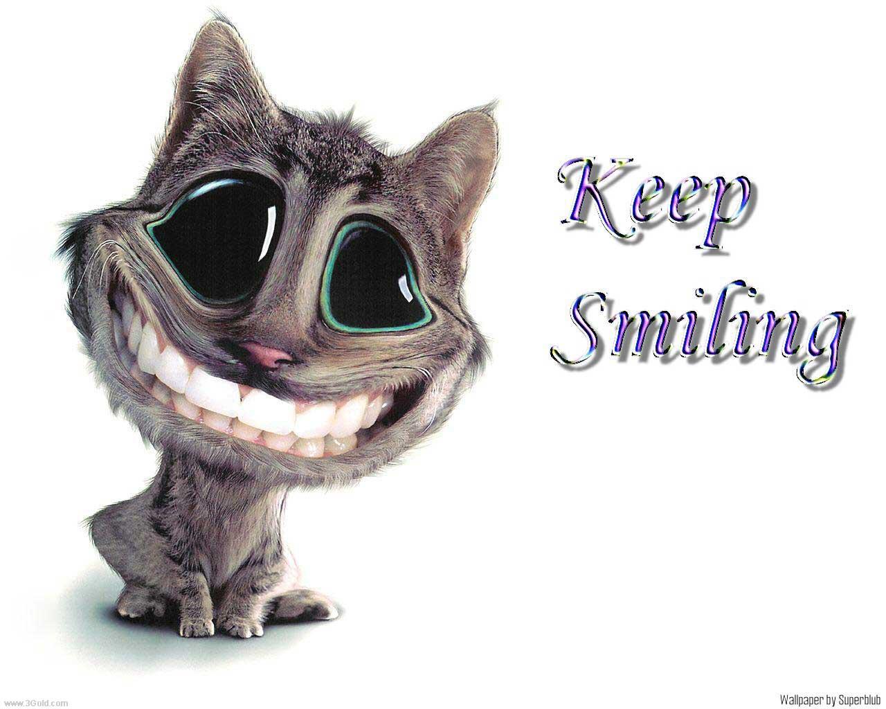 http://2.bp.blogspot.com/-CvIJGdtzrCo/TeY2ZB3D-QI/AAAAAAAAA7A/0AgagafPdAE/s1600/Funny%20images.jpg