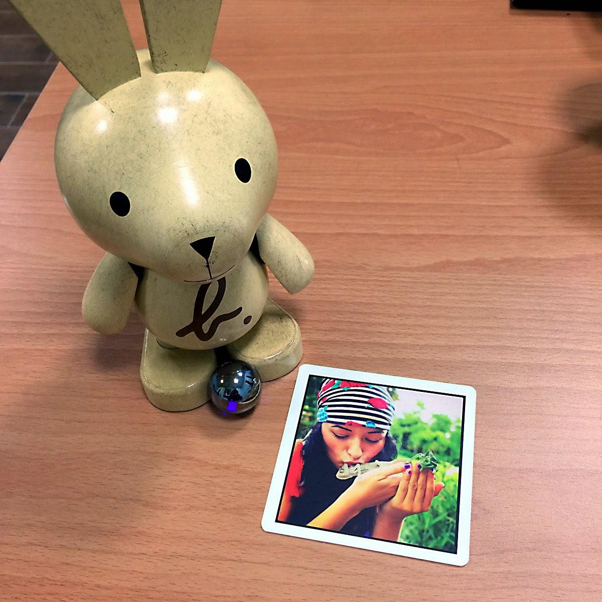 Nemo card waterproof  for instagram -photo gift