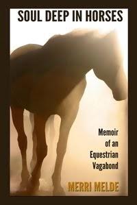 Soul Deep in Horses