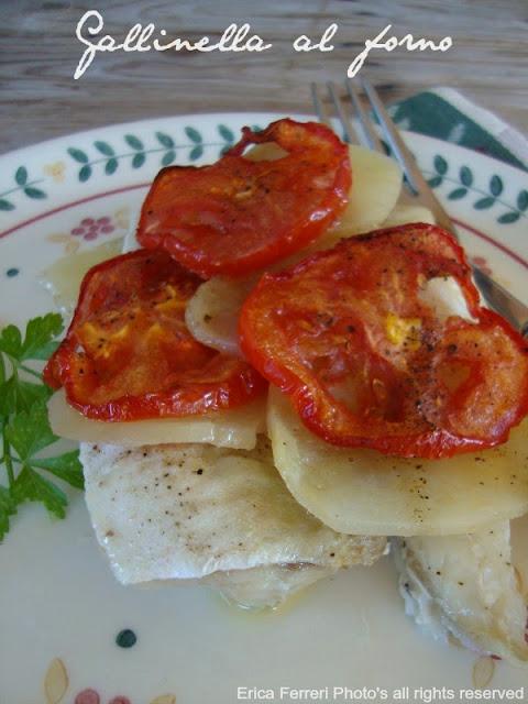 Ricette con pesce gallinella