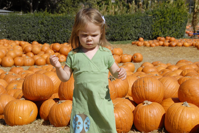 granddaughter in pumpkin patch