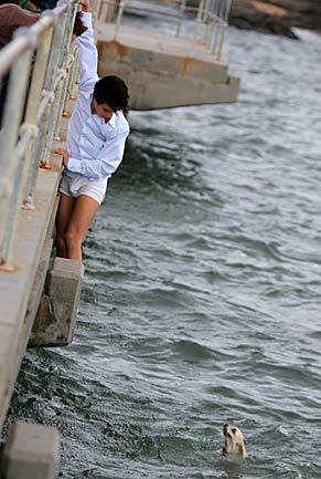 garoto salva cachorro no mar