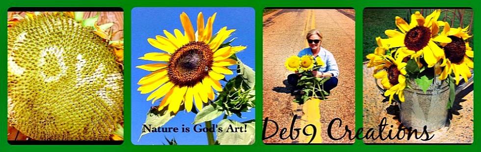 Deb9 Creations