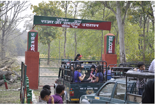 hotels in Rajaji National Park
