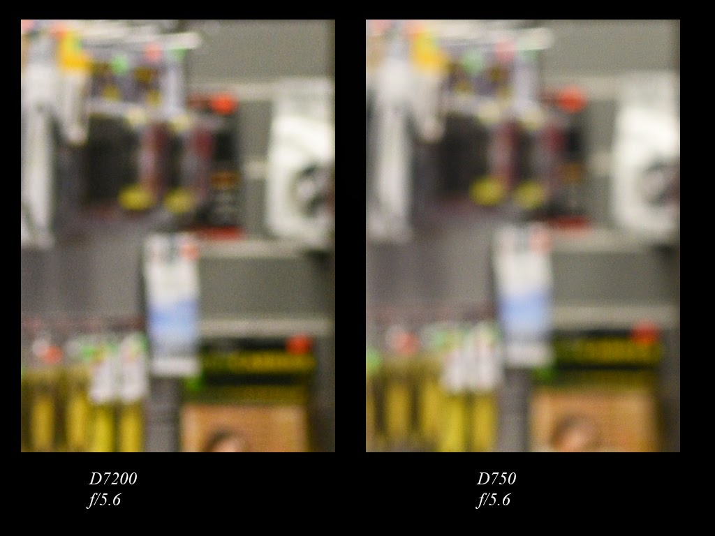 A Thousand Words A Picture: Nikon D7200 vs Nikon D750: Full frame vs ...