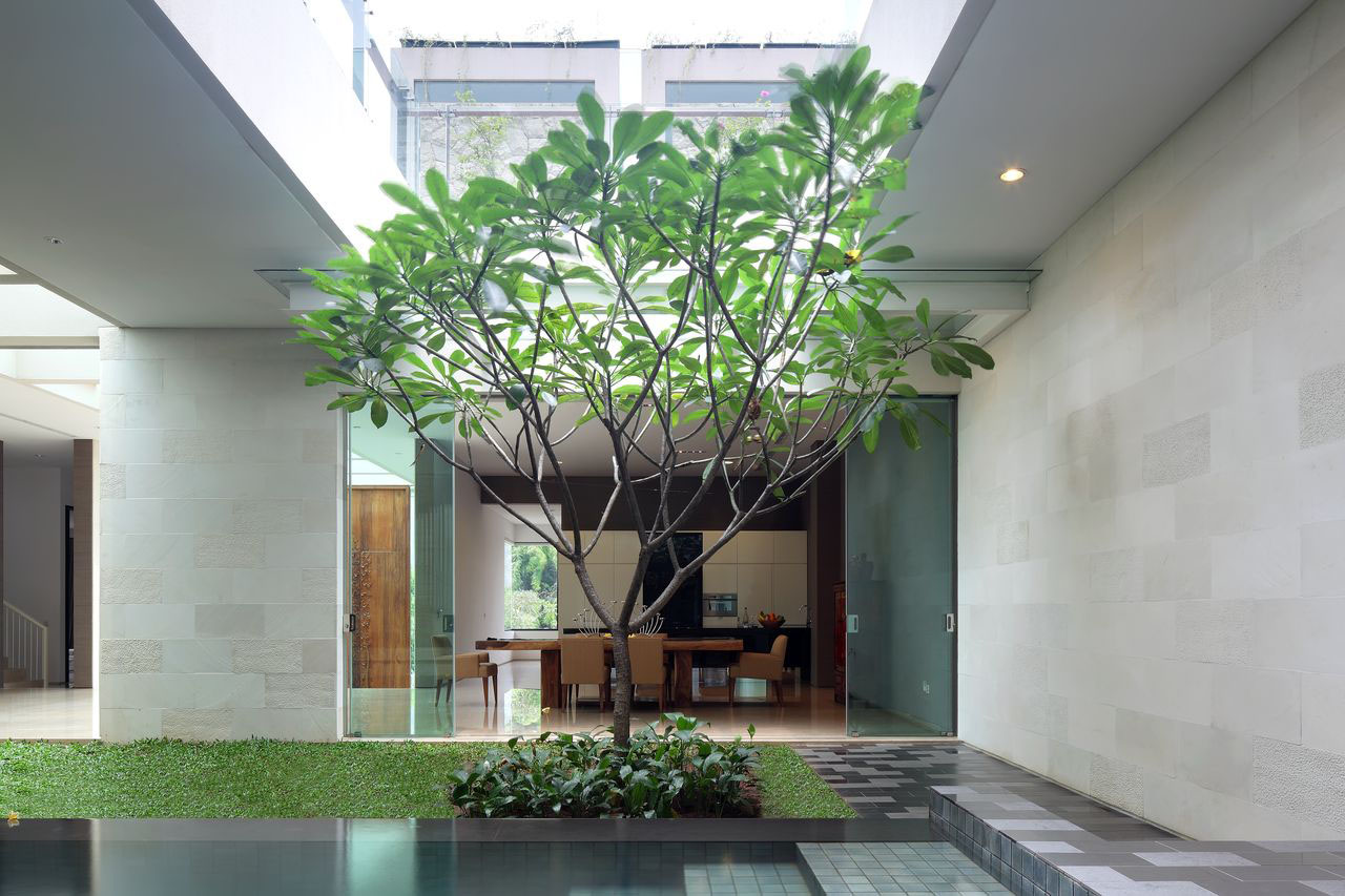 Fidgety fingers plants for our future roof garden for Garden house design ideas malaysia