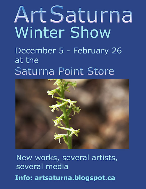 ArtSaturna Winter Show Poster 2015-2016 - Saturna Island artists, painting, watercolor, photography, textiles, ceramics, wood designs