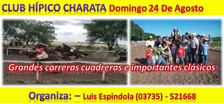 CHARATA 24-08