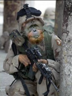 Soldier-Funny-Wallpaper1 - Botoy is ready for war - Anonymous Diary Blog