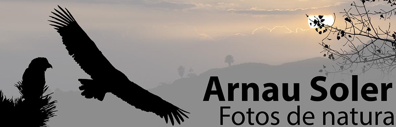 Arnau Soler - Fotos de natura