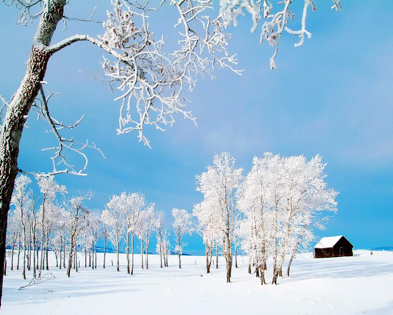 http://2.bp.blogspot.com/-CxFVWL_ioX8/TwbSlvzPOfI/AAAAAAAAAYo/uESMnCXXByM/s1600/Winter+Wallpapers+HD+for+Desktop+1.jpg