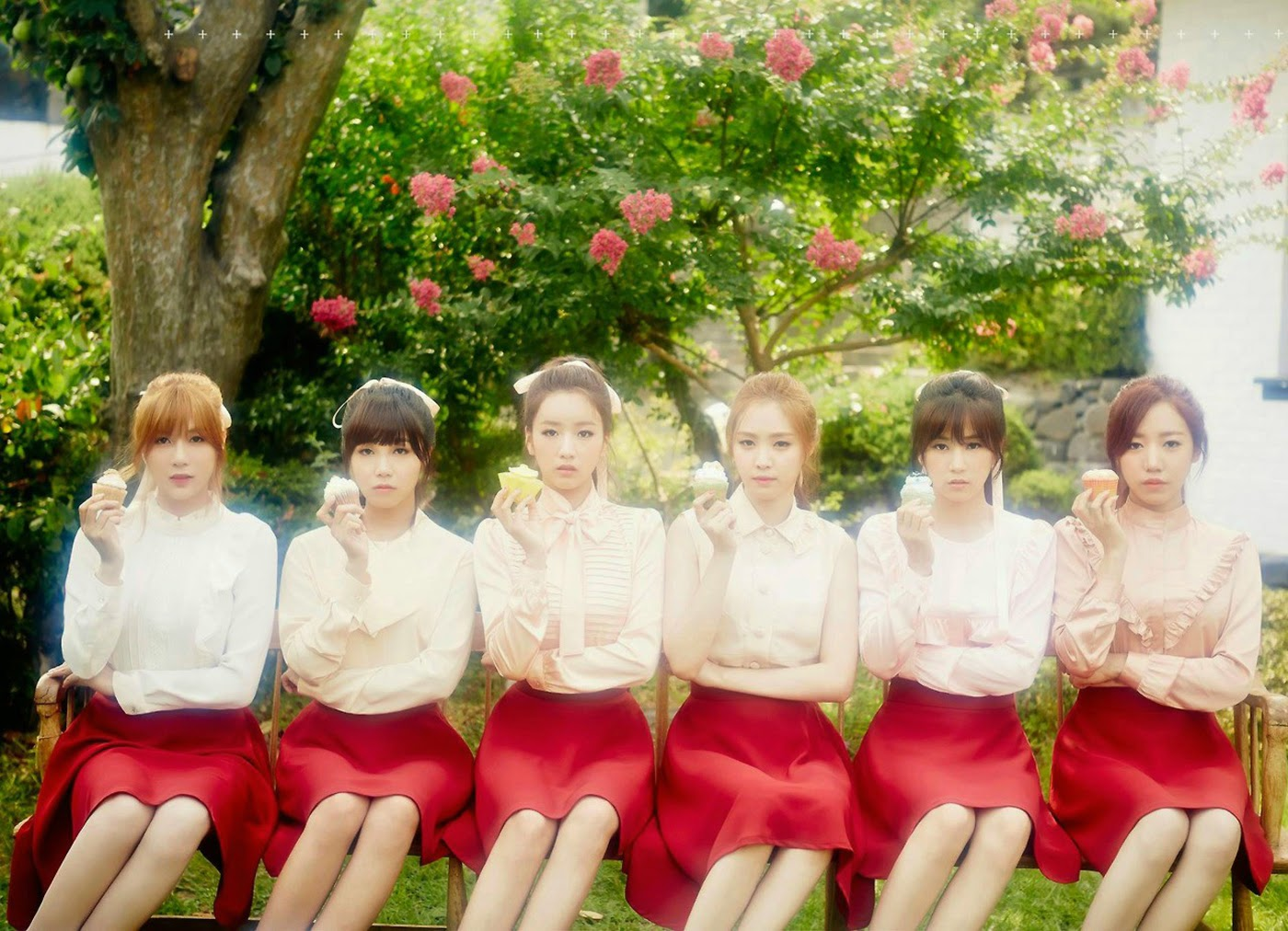 Apink Pink Luv Concept