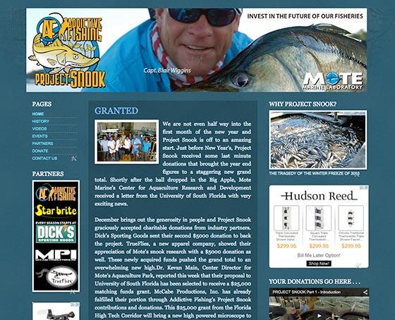 Visit Project Snook Website