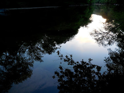 Image of reflections in the Gunpowder River (Maryland, USA) - free to use with attribution to K. R. Smith - file name DSCN0148_KRS_2015_05_14.jpg