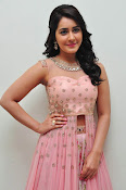 rashi khanna at Bengal tiger audio-thumbnail-20