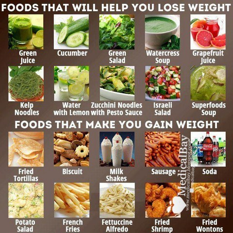 Foods to lose weight and gain weight